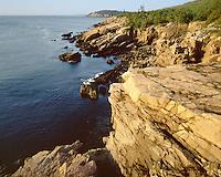 Morning light along the cliffs near Sand Beach; Acadia  National Park, ME