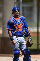 New York Mets catcher Natanael Ramos (33) during practice before a minor league spring training game against the Miami Marlins on March 30, 2015 at the Roger Dean Complex in Jupiter, Florida.  (Mike Janes/Four Seam Images)