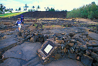 Puako Petroglyph Archeological preserve, located just north of the Mauna Lani Resort on the Kohala coast of the Big Isle. About 1200 petroglyphs can be seen at  this preserve.