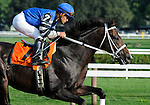 09 August 15: Telling (no. 7), ridden by Javier Castellano and trained by Steve Hobby, gallops past he stands during the post parade before winning the 35th running of the grade 1 Sword Dancer Invitational for three year olds and upward at Saratoga Race Track in Saratoga Springs, New York.