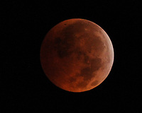 MIAMI, FL- SEPTEMBER 27: An eclipsed supermoon is shown on September 27, 2015 in Miami Florida. A supermoon occurs when a full moon coincides with its perigee, which is its closest approach to the Earth. A lunar eclipse and a supermoon won't occur together until 2033.<br /> <br /> <br /> People:  Moon