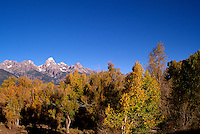 Grand Teton National Park, Wyoming, WY, USA - Grand Teton (Elev 4,197 m / 13,770 ft) and Teton Range Mountains, Autumn / Fall