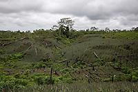 Farming fields are seen in Entre Rios, Chapare province, Bolivia. November 28, 2019.<br /> Des champs agricoles sont visibles à Entre Rios, dans la province du Chapare, en Bolivie. 28 novembre 2019.