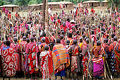 Lolgorian, Kenya. Siria Maasai Manyatta; mass of women with sticks prepared ready to build the 'magic house'.