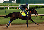LOUISVILLE, KY - MAY 02:  Mor Spirit (Eskendereya x Im a Dixie Girl, by Dixie Union) works 5 furlongs in :59.8 with jockey Gary Stevens at Churchill Downs, Louisville KY, in preparation for the Kentucky Derby. Owner Michael Lund Petersen, trainer Bob Baffert.(Photo by Mary M. Meek/Eclipse Sportswire/Getty Images)