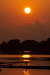 Sunset on a River with silhouette of birds, Yala National Park, Sri Lanka