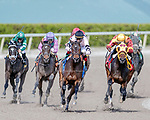 HALLANDALE BEACH, FL - December 16: Lewis Bay #3, wins The $100,000 Rampart Stakes for trainer Chad Brown with jockey Irad Ortiz, Jr. in the irons at Gulfstream Park on December 16, 2017 in Hallandale Beach, FL. (Photo by Bob Aaron/Eclipse Sportswire/Getty Images)