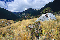 Views from a Stag Flat into the Wangapeka Valley - Kahurangi National Park