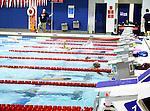 Olympic swimming