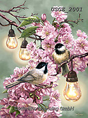 Dona Gelsinger, FLOWERS, BLUMEN, FLORES,birds,tits, paintings+++++,USGE2001,#f#, EVERYDAY