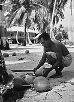 Kokosernte auf Porvenir im San Blas Archipel, Panama 1970er Jahre. Harvesting coconuts at Porvenir on San Blas archipelago, Panama 1970s.