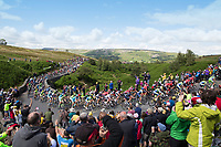 Picture by Shaun Flannery/SWpix.com - 05/07/2014 - Cycling - Tour de France 2014 Grand Depart - Stage 1, Leeds to Harrogate - Yorkshire, England - <br /> Grinton Moor, Yokshire Dales.<br /> The Peloton makes it's way up Grinton Moor on day 1 of Le Tour COPYRIGHT WARNING : THIS IMAGE IS RIGHTS MANAGED AND THE COPYRIGHT MAY SIT WITH A THIRD PARTY PLEASE CONTACT simon@swpix.com BEFORE DOWNLOAD AND OR USE