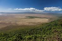 Tanzania. Ngorongoro Crater Caldera Scenic View from the Rim.