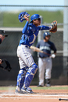 Kansas City Royals catcher Pedro Gonzalez (43) during an instructional league game against the Seattle Mariners on October 2, 2013 at Surprise Stadium Training Complex in Surprise, Arizona.  (Mike Janes/Four Seam Images)