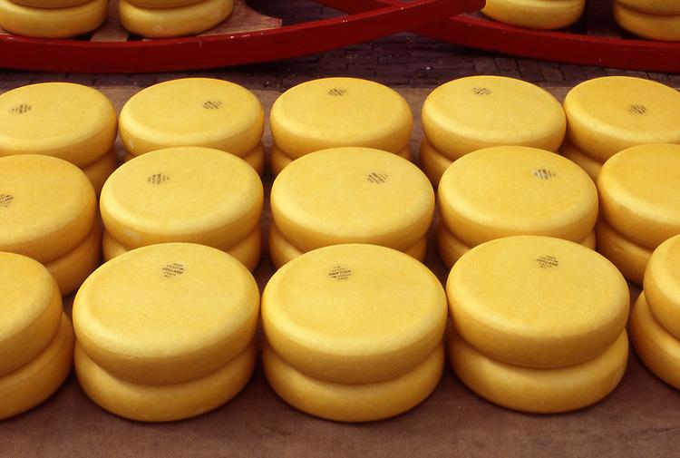 Europe, NLD, Netherlands, Province North Holland, Alkmaar, Cheesemarket, Chesse, Gouda cheese round