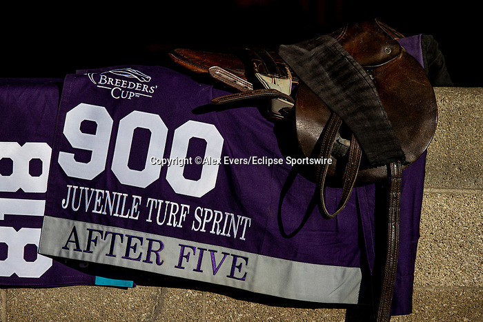November 4, 2020: After Five, trained by trainer Wesley A. Ward, exercises in preparation for the Breeders' Cup Juvenile Turf at at Keeneland Racetrack in Lexington, Kentucky on November 4, 2020. Alex Evers/Eclipse Sportswire/Breeders Cup