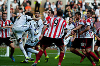 Saturday 19 October 2013 Pictured: Chico Flores ( with ball ) takes a a shot on goal<br /> Re: Barclays Premier League Swansea City vSunderland at the Liberty Stadium, Swansea, Wales