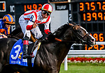August 10, 2019 : Bricks and Mortar, ridden by Irad Ortiz, Jr., wins the Arlington Million on Arlington Million Day at Arlington International Racecourse in Arlington Heights, Illinois. Scott Serio/Eclipse Sportswire/CSM