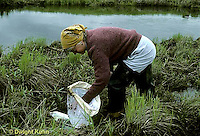 1E18-010x  Mayfly - researcher at stream floodplain habitat of endangered mayfly -  Siphlonisca aerodromia