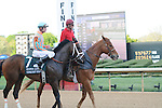 April 12, 2014: #7 Conquest Titan with jockey Calvin Borel aboard before the start of the Arkansas Derby (Grade I) at Oaklawn Park in Hot Springs, AR. Zoie Clift/ESW/CSM