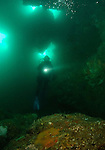 This image was taken on a gloomy day during winter, hence the green water! However even in those conditions the ambient light still filters down into the cavern making a fantastic dive!