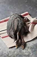 """Europe/France/Rhône-Alpes/26/Drôme/Crest:  Pintadeau de la Drôme AOP de chez Mr Martin,  La production de pintade de la Drôme a obtenu son appellation d'origine """" Pintadeau de la Drôme """" en 1969 et reste depuis la seule Appellation d'Origine Garantie pintade en France.  - Stylisme : Valérie LHOMME  // rance, Drome, Crest, Guinea Fowl of the Drome AOP at Mr Martin, guinea fowl production of Drome got its original name of the Drome Guinea Fowl in 1969 and is the only appellation since Genuine fowl in France, styling, Valerie Lhomme"""