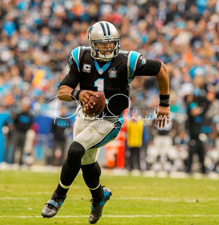 Sports action photography of the Carolina Panthers against the Cleveland Browns during their NFL game at Bank of America Stadium in Charlotte, North Carolina.  <br /> <br /> Charlotte Photographer - Patrick SchneiderPhoto.com