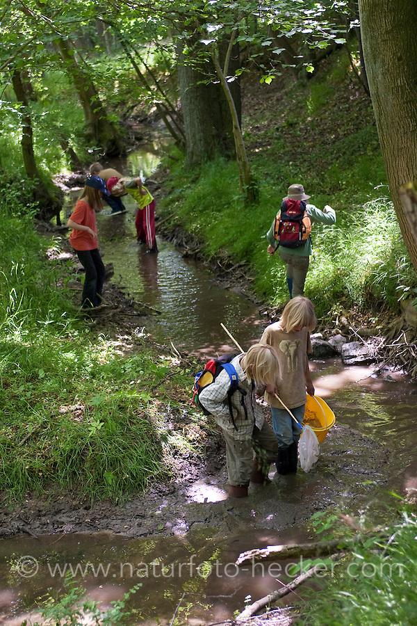 Kinder keschern an einem natürlichen Waldbach, Bach, Kescher, Exkursion