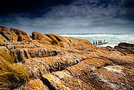 Image Ref: W027<br /> Location: Cape Conran<br /> Date: 02 Nov 2014