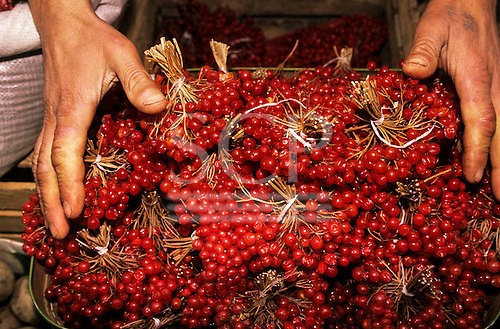 Tbilisi, Georgia. Red berries on sale at the market.