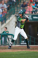 Justin Lopez (14) of the Fort Wayne TinCaps at bat against the West Michigan Whitecaps at Parkview Field on August 5, 2019 in Fort Wayne, Indiana. The TinCaps defeated the Whitecaps 9-3. (Brian Westerholt/Four Seam Images)