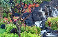 Waterfalls and flower gardens at the Grand Hyatt, Kauai, Hawaii.