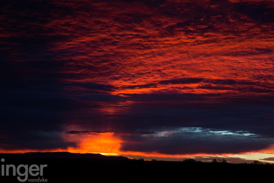 Red sky sunrise at Bosque del Apache