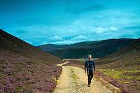 Ascending into Slochd Mor above Glen Feshie, Cairngorm National Park