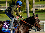 October 28, 2019 : Breeders' Cup Juvenile  entrant Maxfield, trained by Brendan P. Walsh, exercises in preparation for the Breeders' Cup World Championships at Santa Anita Park in Arcadia, California on October 28, 2019. John Voorhees/Eclipse Sportswire/Breeders' Cup/CSM