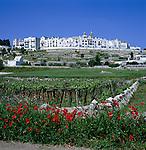 Italy, Puglia, Locorotondo: town at Valle d'Itria (Trulli-region) with church Chiesa Madre | Italien, Apulien, Locorotondo: Ort im Valle d'Itria (Trulli-Region) mit der Chiesa Madre