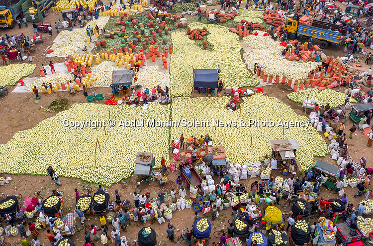 Pictured: The cauliflowers and white radishes<br /> <br /> Aerial shots show millions of cauliflowers and white radishes arranged at a market.  The market covers an area of around 2km, where the vegetables are sold and packed into jute sacks ready for transportation.<br /> <br /> The produce is grown all over northern Bangladesh, and the pictures were taken in Shibganj, in the Upazila district of the country.  SEE OUR COPY FOR DETAILS.<br /> <br /> Please byline: Abdul Momin/Solent News<br /> <br /> © Abdul Momin/Solent News & Photo Agency<br /> UK +44 (0) 2380 458800