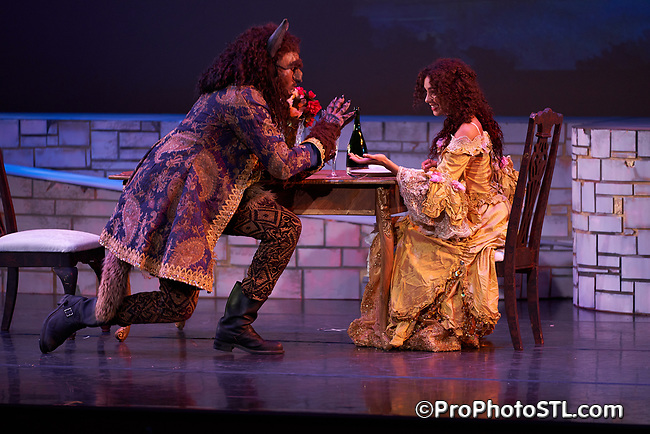 Disney's Beauty and the Beast presented by COCA in St. Louis, Missouri on July 19, 2017.