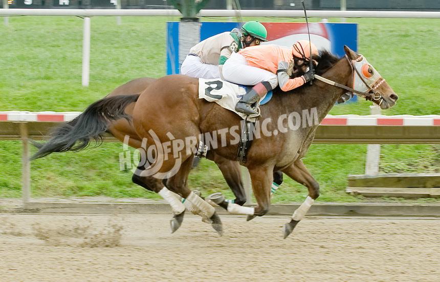 Big Buy Charlie winning at Delaware Park on 10/31/11