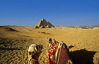 Egypt. Cairo. The Pyramids at Giza and a group of tourists with two camels in foreground