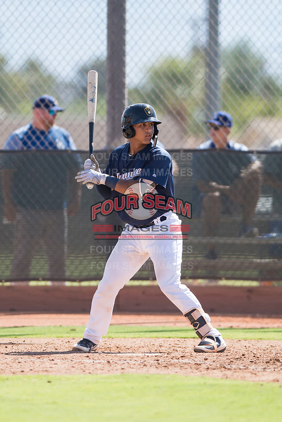 Milwaukee Brewers catcher Andres Melendez (76) at bat during an Instructional League game against the Los Angeles Dodgers at Maryvale Baseball Park on September 24, 2018 in Phoenix, Arizona. (Zachary Lucy/Four Seam Images)