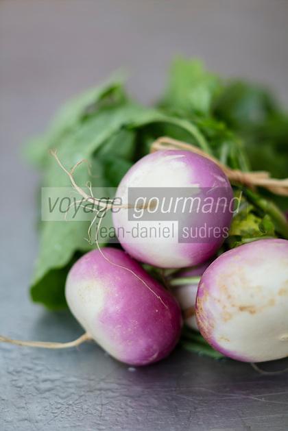 Gastronomie Générale : Navet Violet  bio de Nancy /  General Gastronomy: Organic Violet Turnip