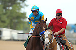 April 11, 2015: American Pharoah with jockey Victor Espinoza aboard before the running of the Arkansas Derby at Oaklawn Park in Hot Springs, AR. Justin Manning/ESW/CSM