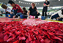 International Roses and Gardening Show in Tokorozawa