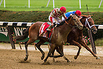 Elmont, NY - OCTOBER 08, 2016: Practical Joke, #1  with Joel Rasario  aboard. wins the Champagne Stakes for 2-year olds, at Belmont Park. (Photo by Sue Kawczynski/Eclipse Sportswire/Getty Images)