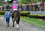 09 May 09: Charitable Man, ridden by Alan Garcia, leaves the paddock before winning the 56th running of the grade 2 Peter Pan Stakes for three year olds at Belmont Park in Elmont, New York.