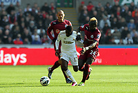 Saturday 2nd March 2013<br /> Pictured: (L-R) Yoan Gouffran, Nathan Dyer, Cheick Tiote.<br /> Re: Barclays Premier Leaguel, Swansea  v Newcastle at the Liberty Stadium in Swansea.
