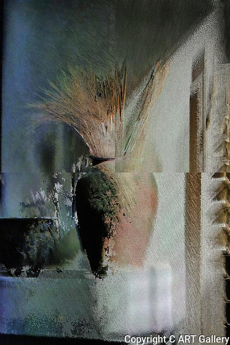 Vase in Ambiguity.