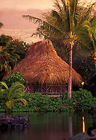 Grass hut with palm tree at Kona village resort on Big island of Hawaii at twighlight