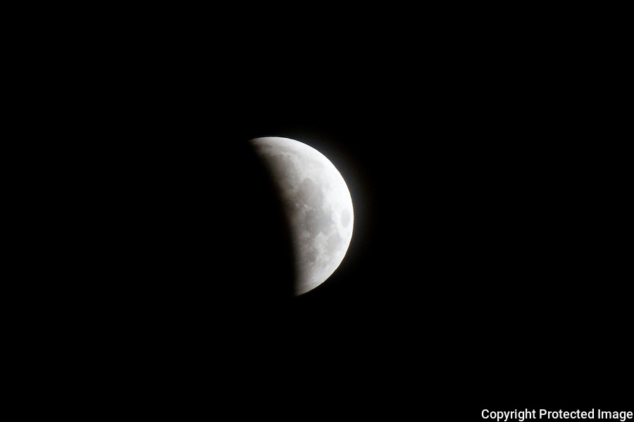 Lunar eclipse  I really enjoy shooting Wild Life & Nature photographs it gets we away of fast lane celebrity and concert shooting.  Part of the proceeds of the sales of these photographs I will be donated to so needed Wolf Conservation Center.<br /> <br /> The Wolf Conservation Center teaches people about wolves, their relationship to the environment and the human role in protecting their future.<br /> <br /> Founded by Hélène Grimaud in 1999, the Wolf Conservation Center (WCC) is a 501(c)(3) not-for-profit environmental education organization working to protect and preserve wolves in North America through science-based education, advocacy, and participation in the federal recovery and release programs for two critically endangered wolf species - the Mexican gray wolf and red wolf.  The WCC's three 'ambassador wolves' reside on exhibit where they help teach the public about wolves and their vital role in the environment. Through wolves, the WCC teaches the broader message of conservation, ecological balance, and personal responsibility for improved human stewardship of our World.<br /> <br /> To best prepare the critically endangered wolves who are candidates for wild-release, the center's 27 Mexican gray wolves and 20 red wolves reside off exhibit within the WCC's Endangered Species Facility.